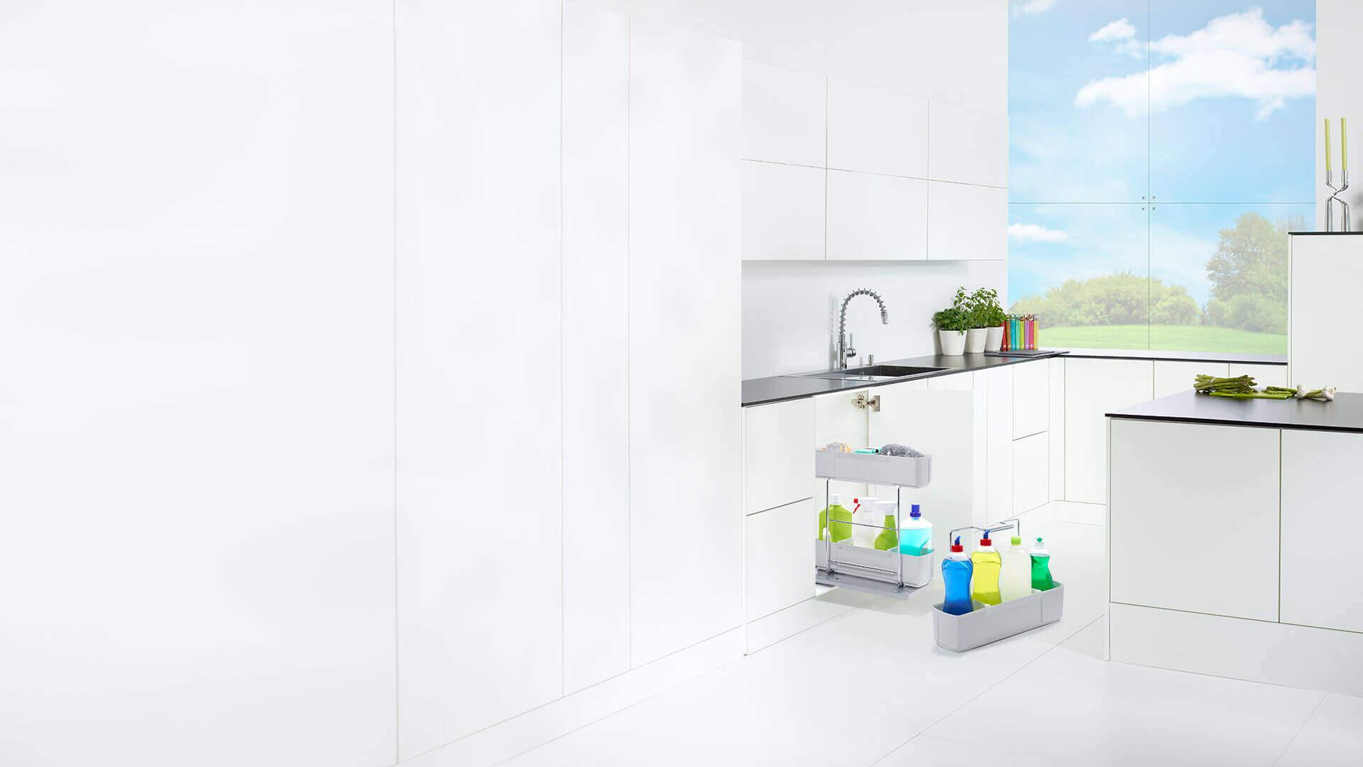 Küche mit Putzmittelauszug