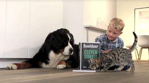 Kind mit Hund und Katze